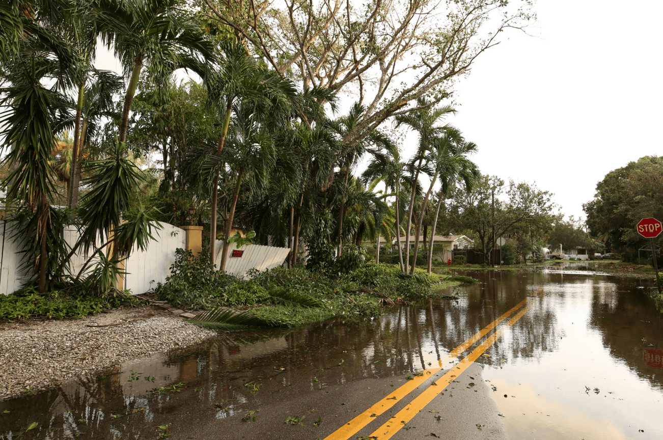 coastal street with hurricane disaster, flooded street, and trees down